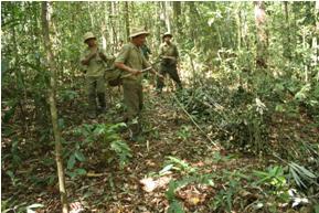 Cộng đồng nhận khoán tuần tra Bảo vệ rừng