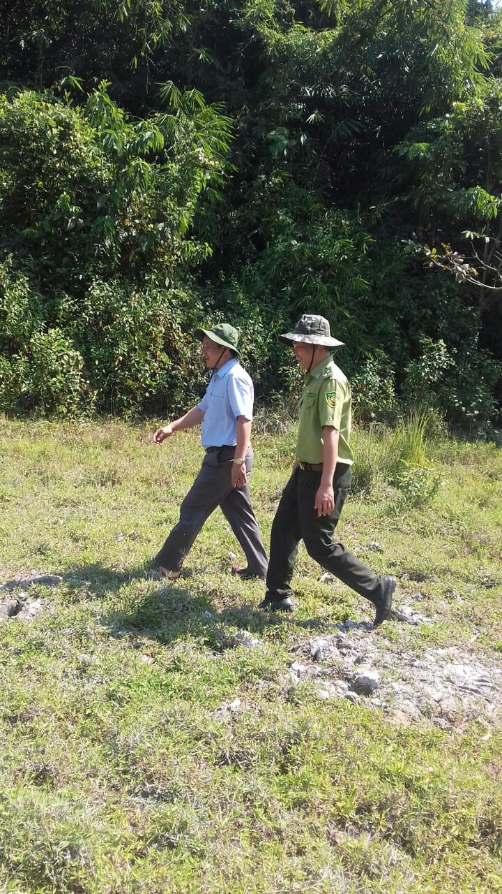 Kiểm tra xác định diện tích rừng được chi trả dịch vụ môi trường rừng năm 2018